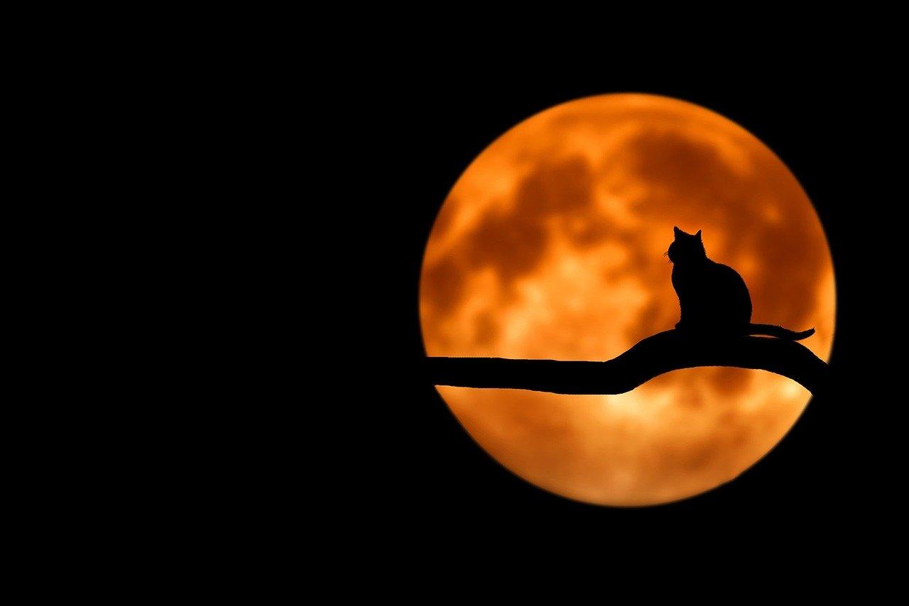 volle maan van 31 oktober